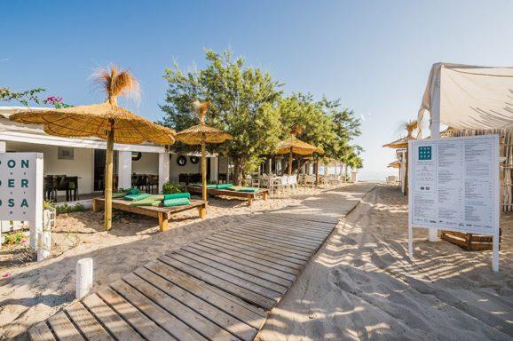 Ponderosa Beach 2015