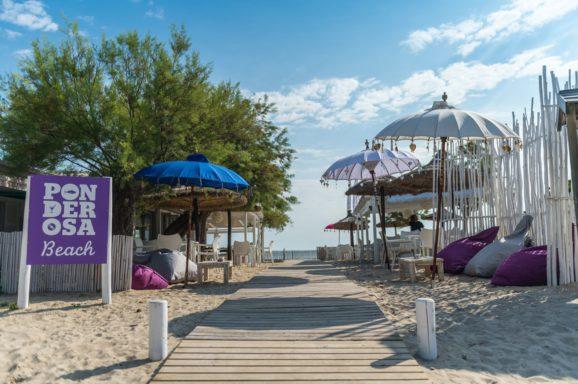 Ponderosa Beach 2014